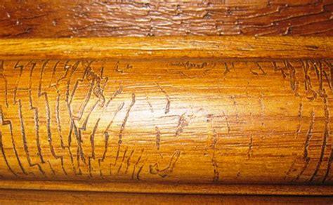 cornici decorative eps decor wood cornici decorative