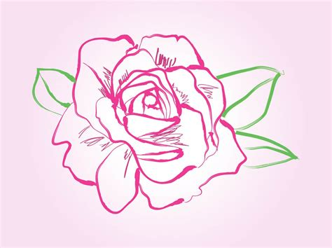 how to draw doodle roses drawing vector vector graphics freevector