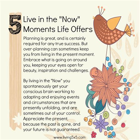 your the now live in the now moments offers step outside your comfort zone