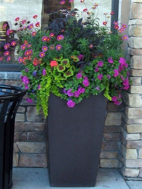 Pinterest Garden Container Ideas Container Garden Design Garden Garden Container Ideas Pinterest