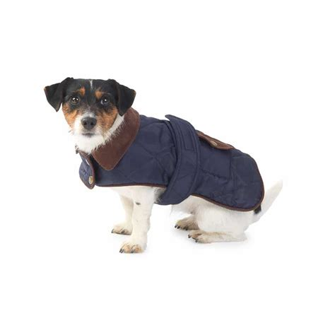 coat puppies quilted country coat in navy and labradors