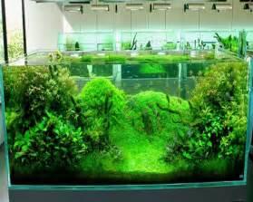 japanese aquarium design 187 design and ideas