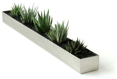 Planters Modern by Gus Modern Fruit Trough Indoor Pots And