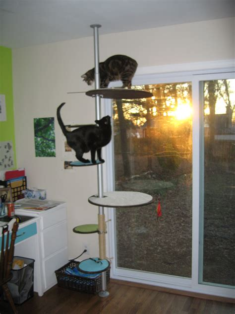 modern cat tree ikea both cats at once jill carson
