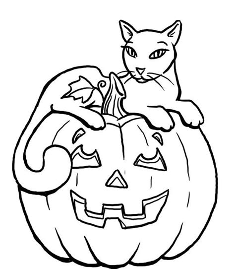 pumpkin themed coloring pages pumpkin halloween black cat coloring pages for kids 00