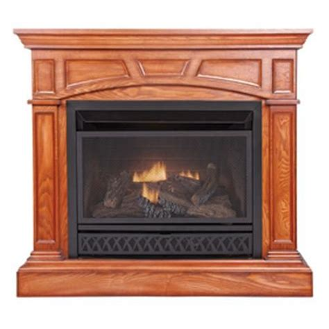 Cost Of Ventless Gas Fireplace by Fuel Gas Fireplaces And Gas Fireplaces On