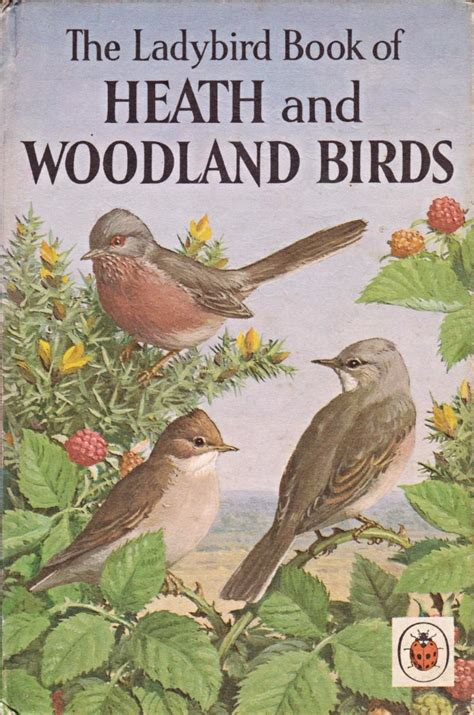 the birds carol iboo classics books vintage ladybird book of heath woodland birds nature