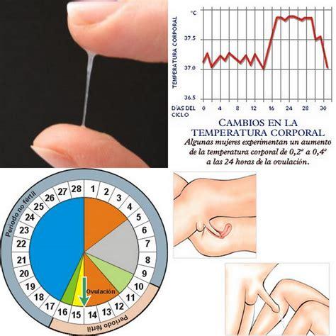 Dias Fertiles De Una Mujer Calendario 191 C 243 Mo Reconocer Los Dias Fertiles De Mi Ciclo Menstrual