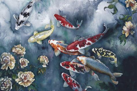 koi fish wallpapers gallery