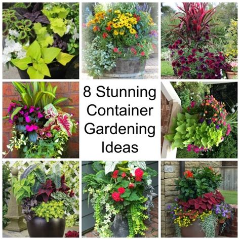 gardening ideas 8 stunning container gardening ideas home and garden