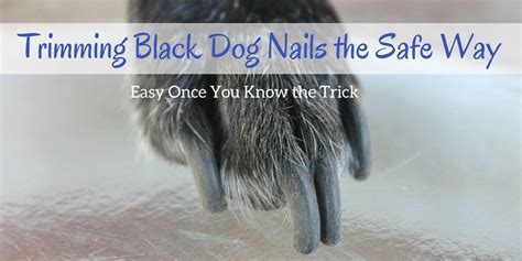 how to clip nails that are black trimming black nails the safe way easy once you the trick