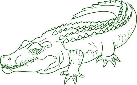Crocodile Image Outline by Crocodile Outline