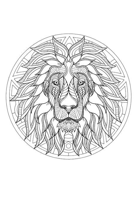 mandala  incredible lion head  geometric patterns
