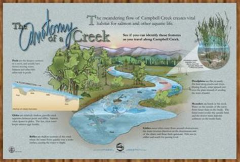 Anatomy Of A Park the anatomy of a cbell creek anchorage