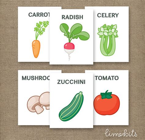print flash cards kinkos vegetable flash cards printable 4x5in