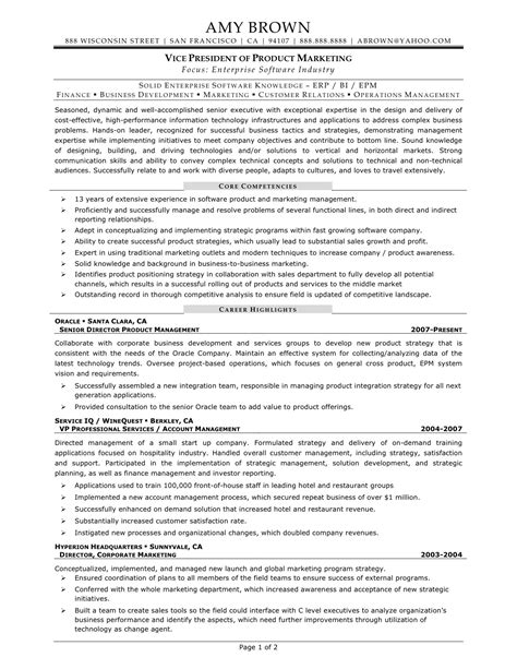 resume objective exles for sales and marketing vp of sales resume exles 28 images vp sales resume sle