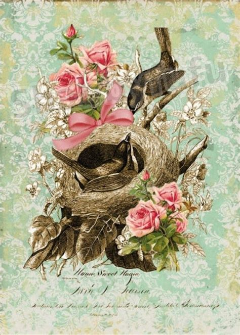 Vintage Roses French Art Print Shabby Cottage Home Decor A4 | unavailable listing on etsy