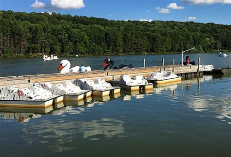 swan boats near turtle back zoo south mountain reservation for kids swings zoo fairy