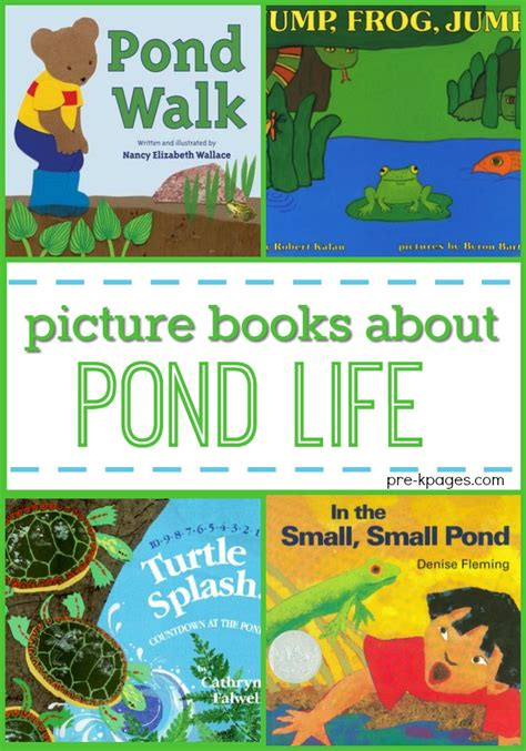 pond books books for preschool about pond pre k pages