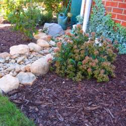 How To Fix Drainage Problem In Backyard 16 1