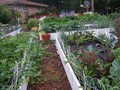 Pinterest Raised Garden Beds - raised bed garden gardens pinterest