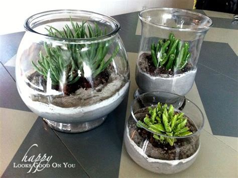 glass succulent planter 1000 ideas about succulents in glass on