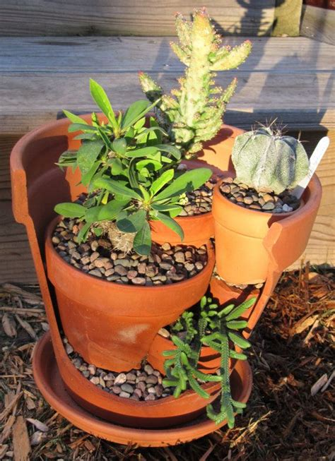 upcycled broken pot cactus succulent garden cool