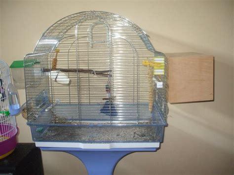gabbia per inseparabili le due gabbie vicine lui mangia e sembra tranquillo