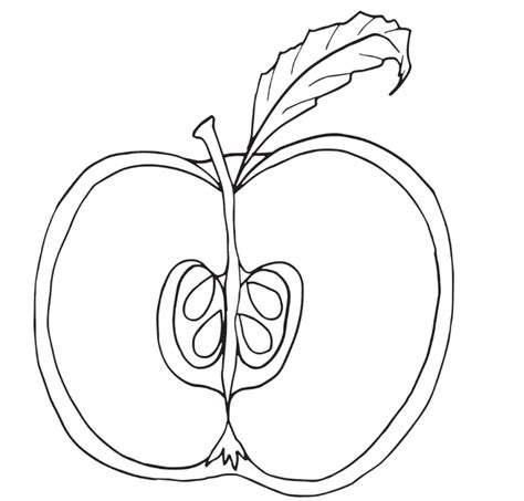 apple fruit coloring page print download make your kids more creative with apple