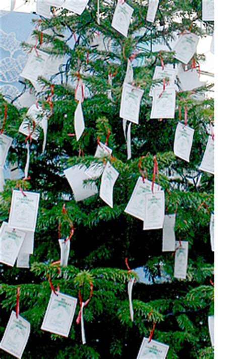 wishing tree corsham the bath and wiltshire parent