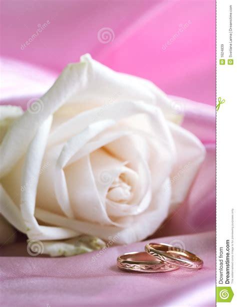 white and wedding rings stock image image 1624839
