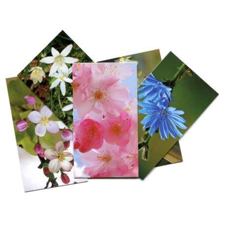 imagenes de flores de bach juego de tarjetas de flores de bach biocyber