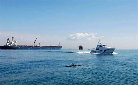 capitaneria di porto ostia guardia costiera e oceanomare onlus insieme per difendere
