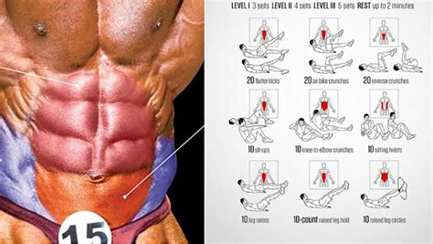 lower ab workout learning the basics of a lower ab workout