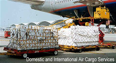 air cargo domestic  international blue grace