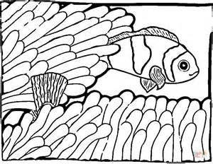 301 Moved Permanently Clown Fish Coloring Pages