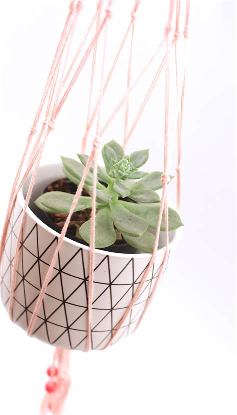 Macrame Plant Holder Tutorial - diy macrame plant hanger tutorial polka dot