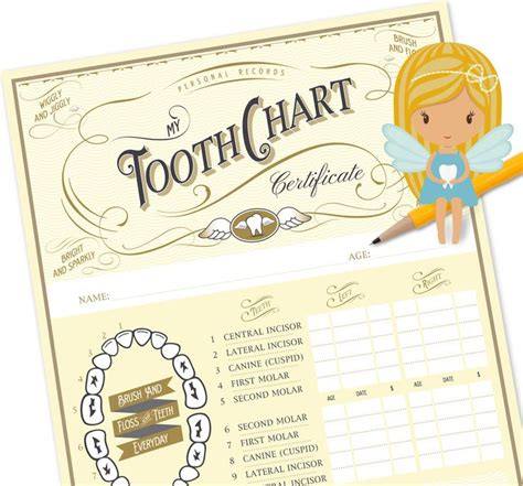 free printable tooth certificate template tooth chart tooth certificate tooth