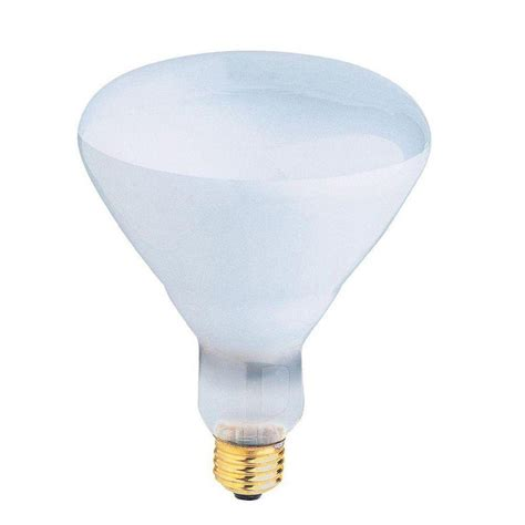 400 watt light bulb feit electric 400 watt incandescent r40 pool and spa flood