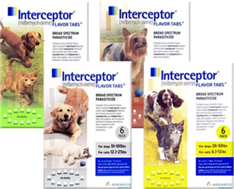 heartworm medicine for puppies interceptor flavor tabs heartworm medicine for dogs and cats