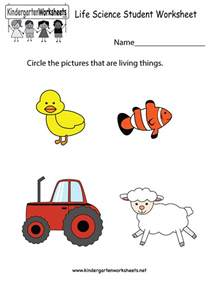 science kindergarten worksheets abitlikethis