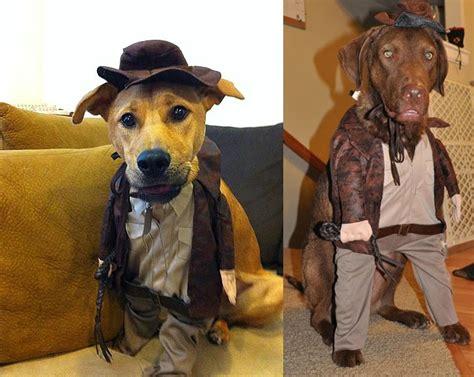 jones dogs indiana jones costume