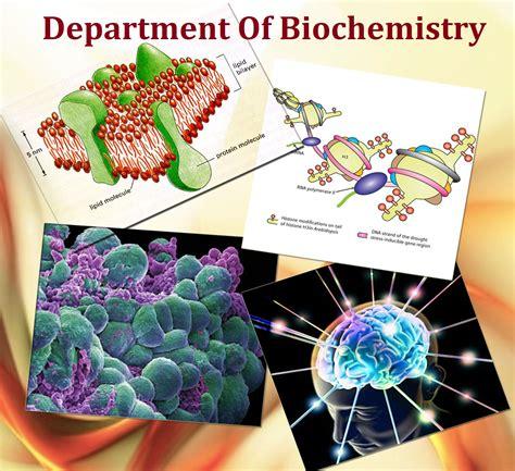 Sfsu Mba Requirements by Graduate Schools Graduate Schools Biochemistry