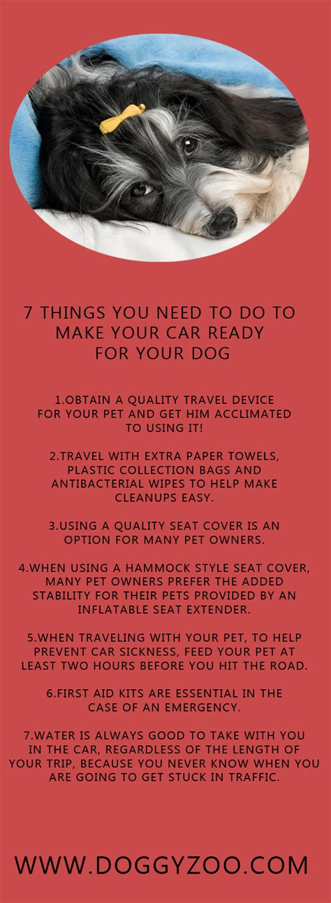 things you need for a puppy 7 things you need to do to make your car ready for your doggyzoo comdoggyzoo