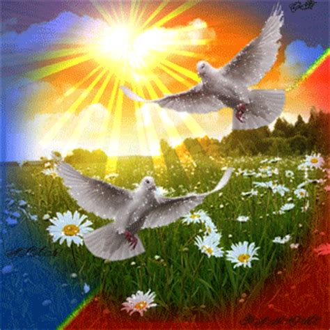 Картинки совы из сказок