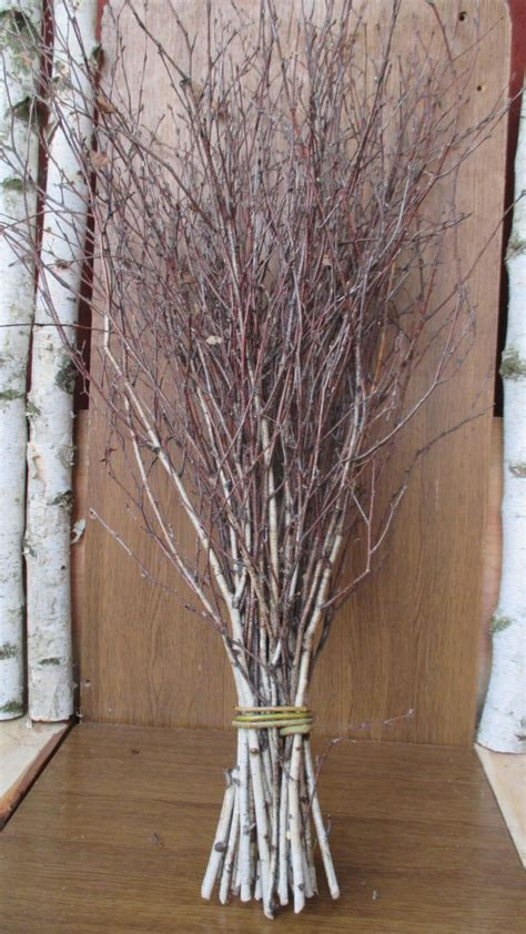twig tree home decorating white birch branches birch wood logs paper birch sticks