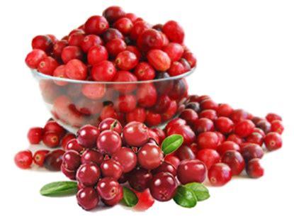Prive Uri Cran Plus Cranberry Extract Uricran Anti Anyang Anyangan cara mengatasi anyang anyang an yang membandel beautyasti1