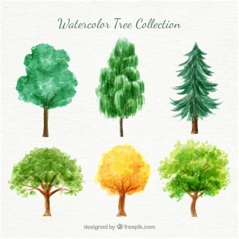water color tree watercolor variety of trees pack vector free