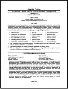 Financial Analyst Resume Exles by Federal Financial Analyst Resume Sle The Resume Clinic