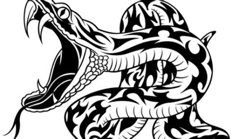 imagenes de calaveras tribales tatuajes de serpientes con estilo tribal mil recursos